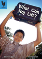 04-what-can-raj-lift