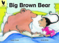 01-big-brown-bear